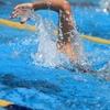 水泳の習い事に関するウソ・ホントを個人的に考察