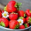 いちごの栄養とダイエット効果!あんなに可愛くて美味しくて痩せれるなんて最強ですか。