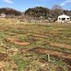 畑の賃貸契約更新