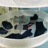 洗濯干しをとことん手抜きしたい!だから靴下は吊るさない