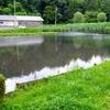 中沢池(茨城県水戸)