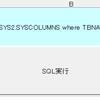 AS/400の表説明・列説明(日本語記述)をExcelで取得するVBA