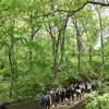 山の自然学現地講座/多田多恵子先生と高尾山の観察会