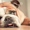 30歳を過ぎたら、意図的に休息・リラックスをすべき理由