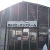 「軽井沢ガーデンファームいちご園」で、いちご4種類の食べ比べを堪能する!お土産で白いちごと黒いちごを楽しもう。
