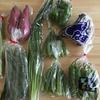 奈半利町から野菜が届きました!