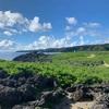 沖縄新婚旅行 第ニ日目 午前  沖縄北部を満喫