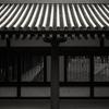 雨の日の薬師寺東側回廊