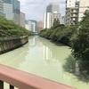 本日29日は休館日です&川の色もうつりにけりないたづらに。