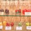 【ドイツ・ベルリン】ベルリンの中心地にひっそりと潜む、キャンディー専門店『Bonbonmacherei』に行ってみた!