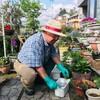 5月9日(土)コロナ騒ぎもうんざりだ、我が家の山野草ガーデン、三ノ倉菜花、