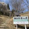 蓬田岳、瀧桜、ランチ