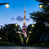夏の夜のフォトウォーク。ライトアップ東京タワーを芝公園から撮る