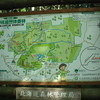 森林浴の「快適さ」とは?〜野幌森林公園〜