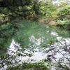 恵の園の池(仮称)(群馬県渋川)