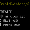 Docker で Oracle DataBase 11gR2 を構築