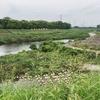豊中 千里川の源流を探し求めて自転車でポタリング①