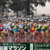 栃木県大田原市で開催された第31回大田原マラソンに参加してきました