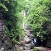 森林浴とリフレッシュに最適 洒水の滝とその周辺(山北町)