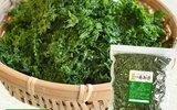 ラムナン硫酸:海藻あおさの新型コロナウイルス増殖抑制効果は未確認