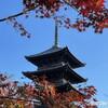 紅葉の京都を堪能 第二弾! 東寺