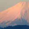 初日さす雪の富士に