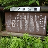 田ノ原湿原【長野県 志賀高原】~雨でも歩ける天然記念物の湿原~【2020年7月】