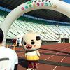 大阪 長居 ぱんどせる ゆるキャラマラソン 10キロで正真正銘のドベになった!