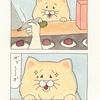 ネコノヒー「大判焼き」