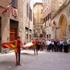 シエナはお祭り(Palio di Siena)