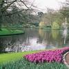 オランダ&ベルギー旅行『その3』