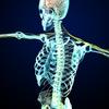 脳の変化、身体の使い方の改善。