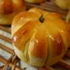【ホシノ酵母】かぼちゃあんぱんを焼きました