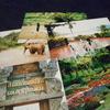 忘却トライアングル~北タイ 1999