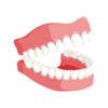 【2018年版】ホワイトニングは歯医者選びが一番大事!おすすめはココ!