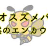 VSオオスズメバチ!!オオスズメバチが現れた!〜突然のエンカウント〜