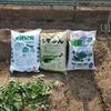夏野菜の準備とジャガイモの土寄せ