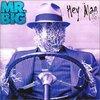 Mr Bigはあまり好きではないのですが、Take Coverは大好きです。