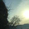 お雛様が見た日本のまつり@飯塚