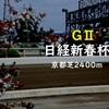 日経新春杯2019 人気馬を考察