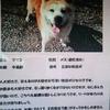 岡山県民の方、マツコを助けてください。