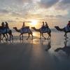 西オーストラリア郊外の観光地 ~ラクダがいる北の大地・Broome(ブルーム)~