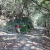 丹生山系縦走に挑戦(その2)丹生山
