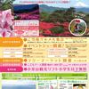 27日(金)から小室山公園つつじ祭りが始まります(多分w