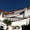 チベット旅行記 7 ポタラ宮も霞む美女と出会う