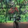 自転車ショーケース