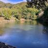 ヒシの池(和歌山県和歌山)