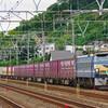 10月4日撮影 東海道線 平塚~大磯間 大磯~二宮間 貨物列車撮影② 5094ㇾ 5095ㇾ