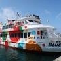 済州島(チェジュ島)島旅 #青麦の揺れる加波島(1)