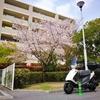 桜の季節に引越し、新生活開始、そしてアドレスV125の始動